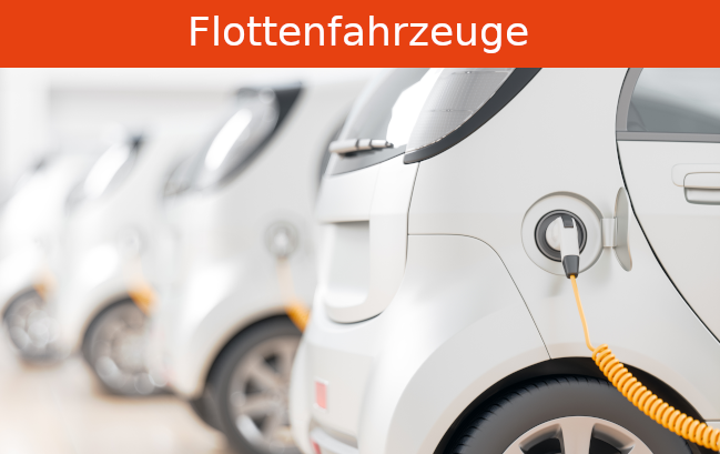 Flottenfahrzeuge_card